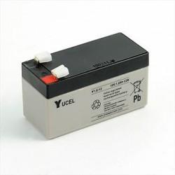 Batterie YUCEL Y1.2-12