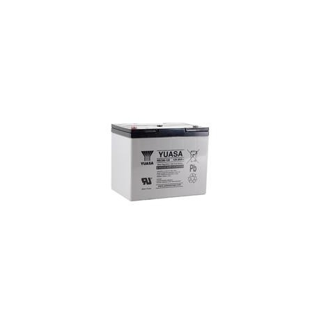 Batterie cyclic yuasa 80 Ah 12 v